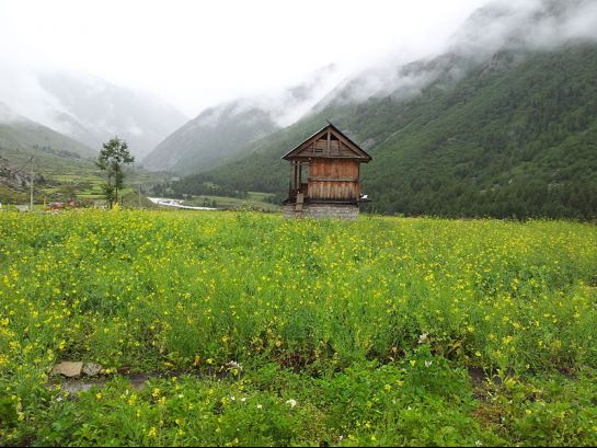 Sangla photos, Chitkul - Located at Indo-Tibet border