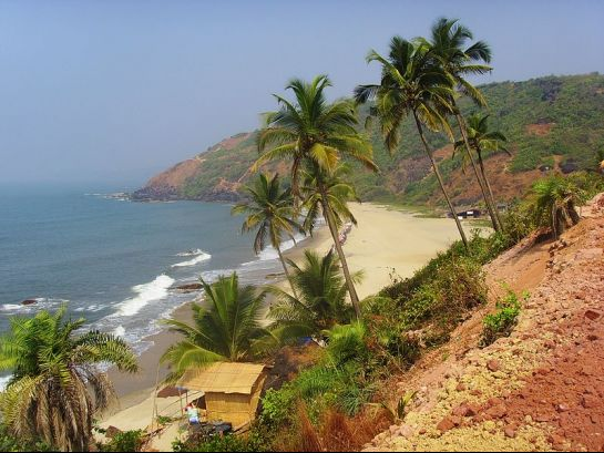 Goa photos, Arambol Beach - Sandy pathway, Palm trees & the sea....