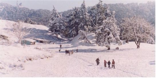 Nainital photos, Snow-View - View, Nainital
