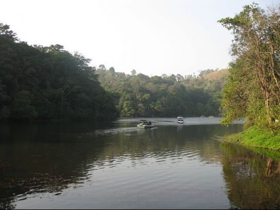 Wayanad photos, Pookot Lake - Surrounded by Green