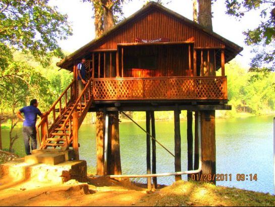 Thrissur photos, Parambikkulam Wildlife Sanctuary - Tree Top Hut