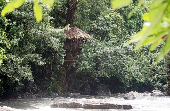 Idukki photos, Thommankuthu Falls - Tree House