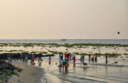 Kochi photos, Kochi Beach - Beach Waters and Travellers