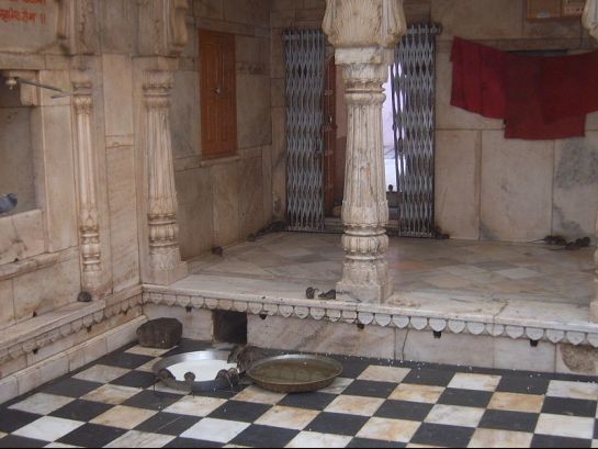 Deshnok photos, Karni Mata Temple - Milk offered by devotees