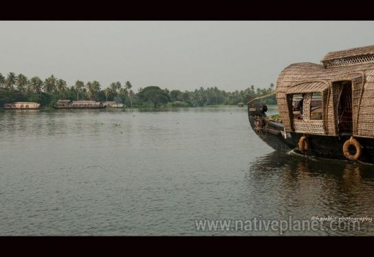Alleppey photos, Houseboats in Kerala - Beautiful Backwaters