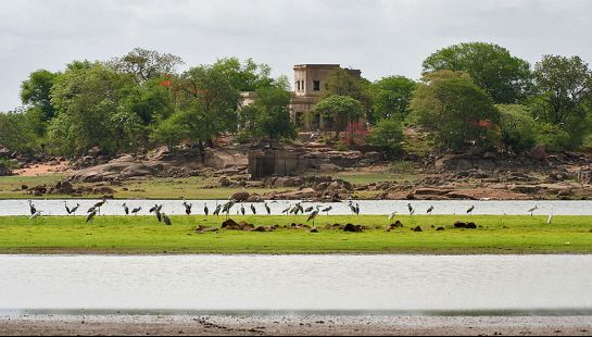 Medak photos, Pocharam Sanctuary - Lake