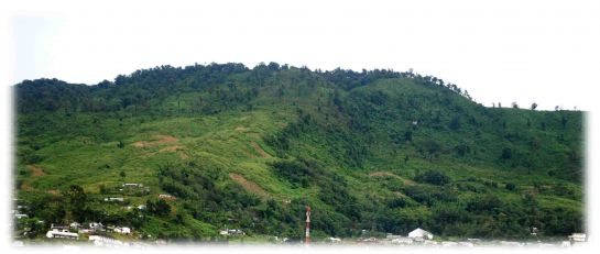 Wokha photos, Mount Tiyi - Lush Green