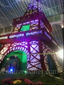 Bangalore photos, Lal Bagh - Flower tower
