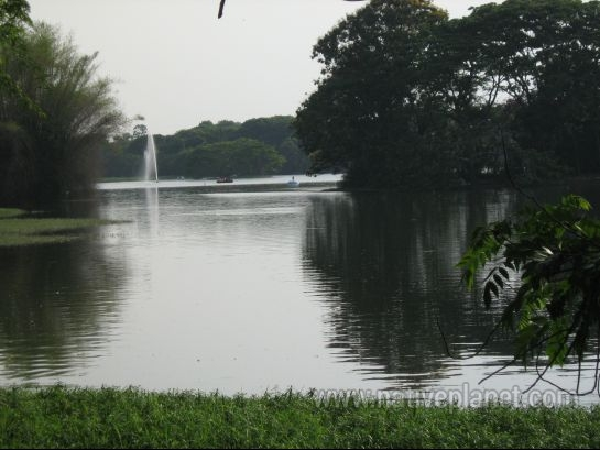 Mysore photos, Karanji Lake - A beautiful View