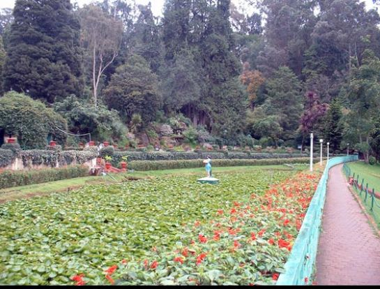 Ooty photos, Botanical Garden - A path through garden