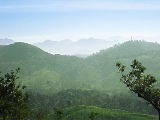 Valparai photos, An aesthetic view