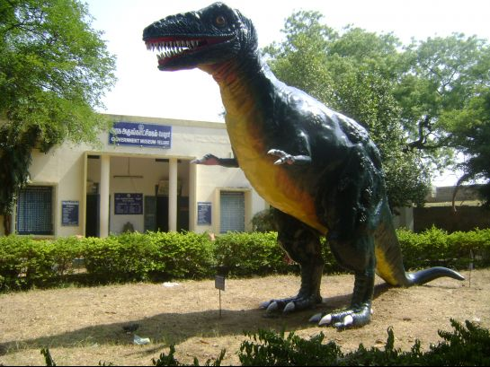 Vellore photos, State Government Museum - Dinosaur