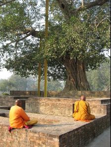 Sravasti photos, Jetavana Monastery - Monks at Meditation