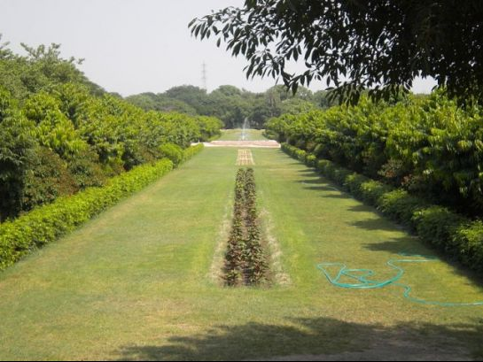 Agra photos, Mehtab Bagh - The lush green garden.