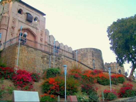 Jhansi photos, Fort of Jhansi - Blooms