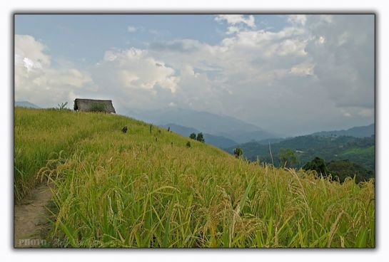 Miao photos, Jairampur - A view Landscape