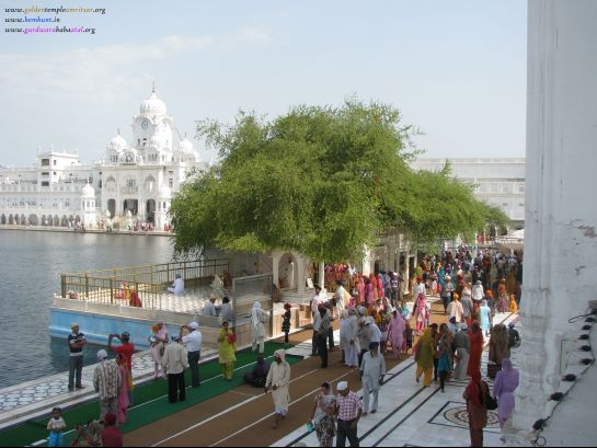 Amritsar photos, Golden Temple - Wide View