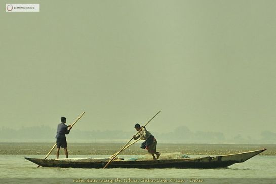 Chilika photos, Chilka Lake - Sailors