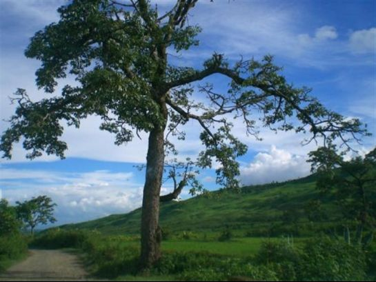 Imphal photos, Landscape