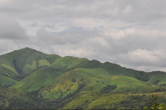Kudremukh photos, Kudremukh National Park - A Slice of Green!