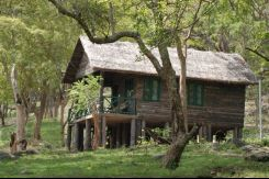 Jungle Lodges K Gudi Wilderness Camp