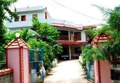 Angel's Inn Homestay