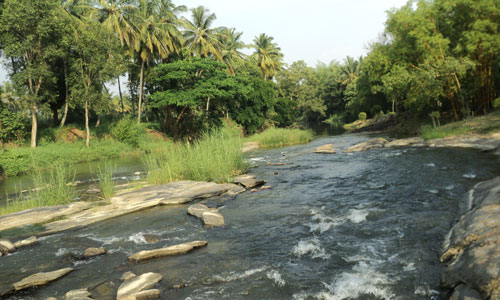 Cauvery Sannidhi for Indian Culture