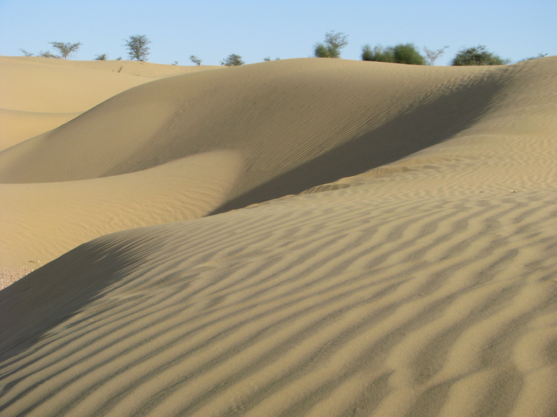 Sand dunes surrounding the resort