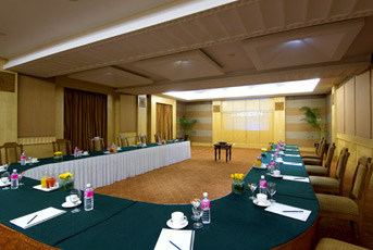 Aravalli Meeting Room