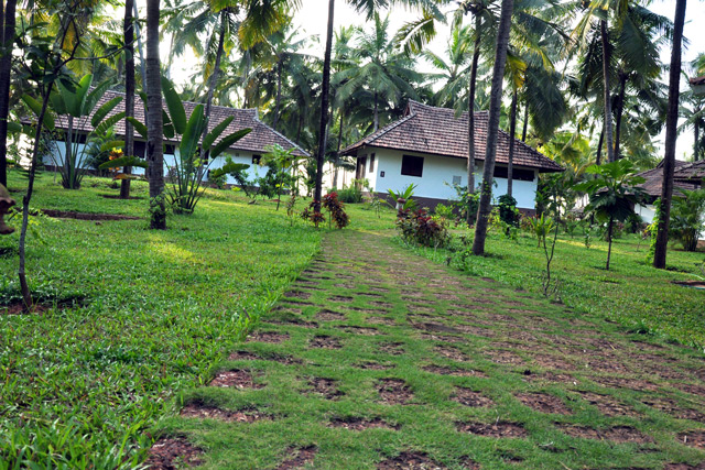 Pathway-&-cottage-view