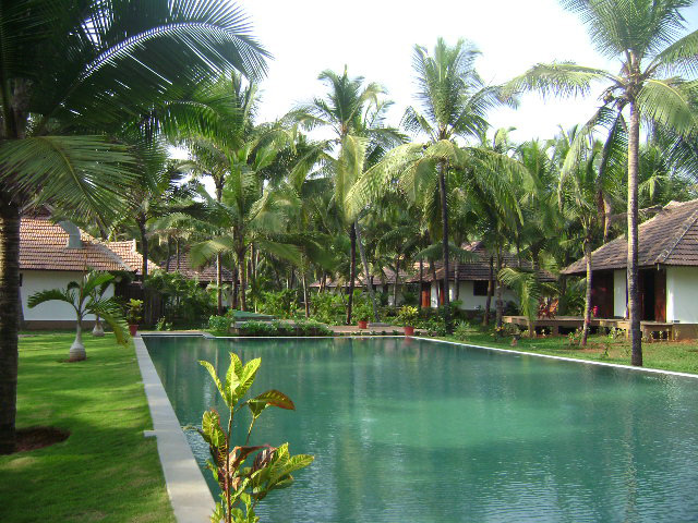 Pool-&-cottages