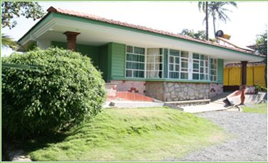 Green Palm Cottage