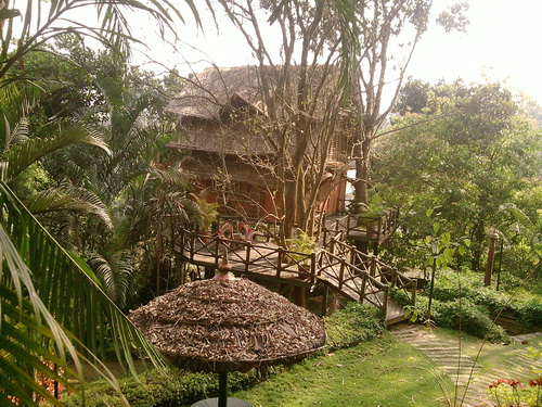 Bamboo Tree House in a serene locale