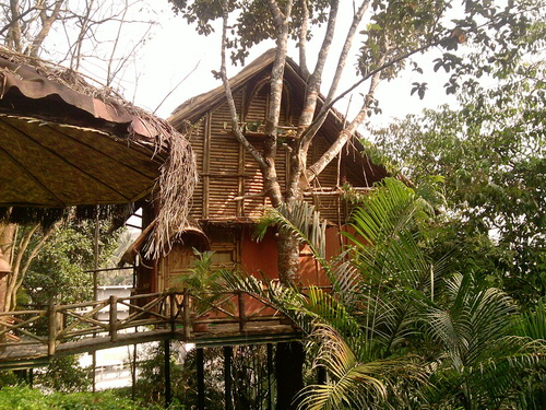 Bamboo Tree House set amidst Nature
