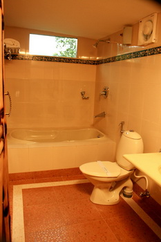 Bathroom In the Bamboo Tree House
