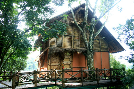 Front View of Bamboo Tree House
