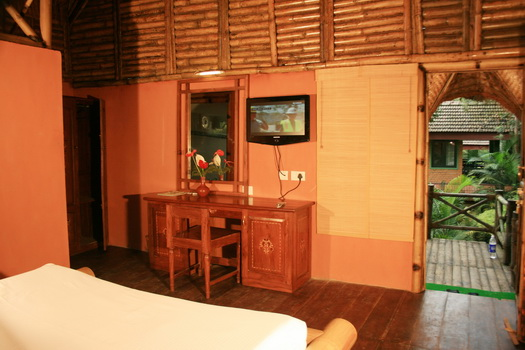 Inside view of the Bamboo Tree House 3