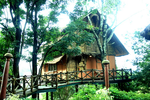 Main View of Bamboo Tree House
