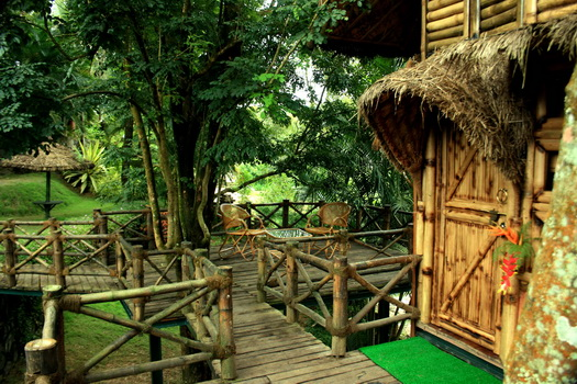 Sit out at Bamboo Tree House