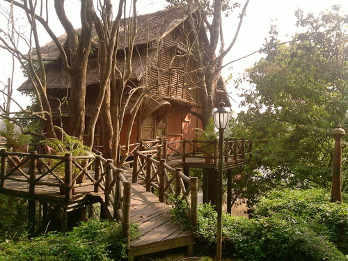 Way to Bamboo Tree House