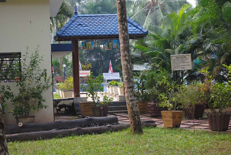 Ayurveda Centre and Swimming pool