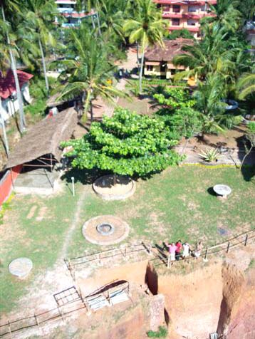 Top view of the resort