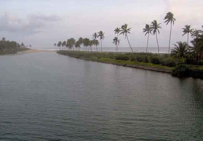 Bewitching Backwaters