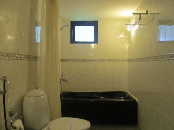 Executive Deluxe Rooms: Washroom
