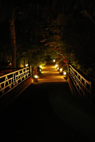 Approach Bridge at Night