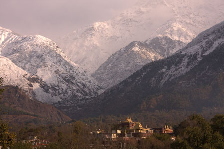 Snow-capped Dhauladhar
