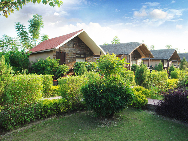 Cottages Amidst Greenary