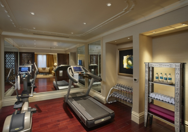 Presidential Suite Gym