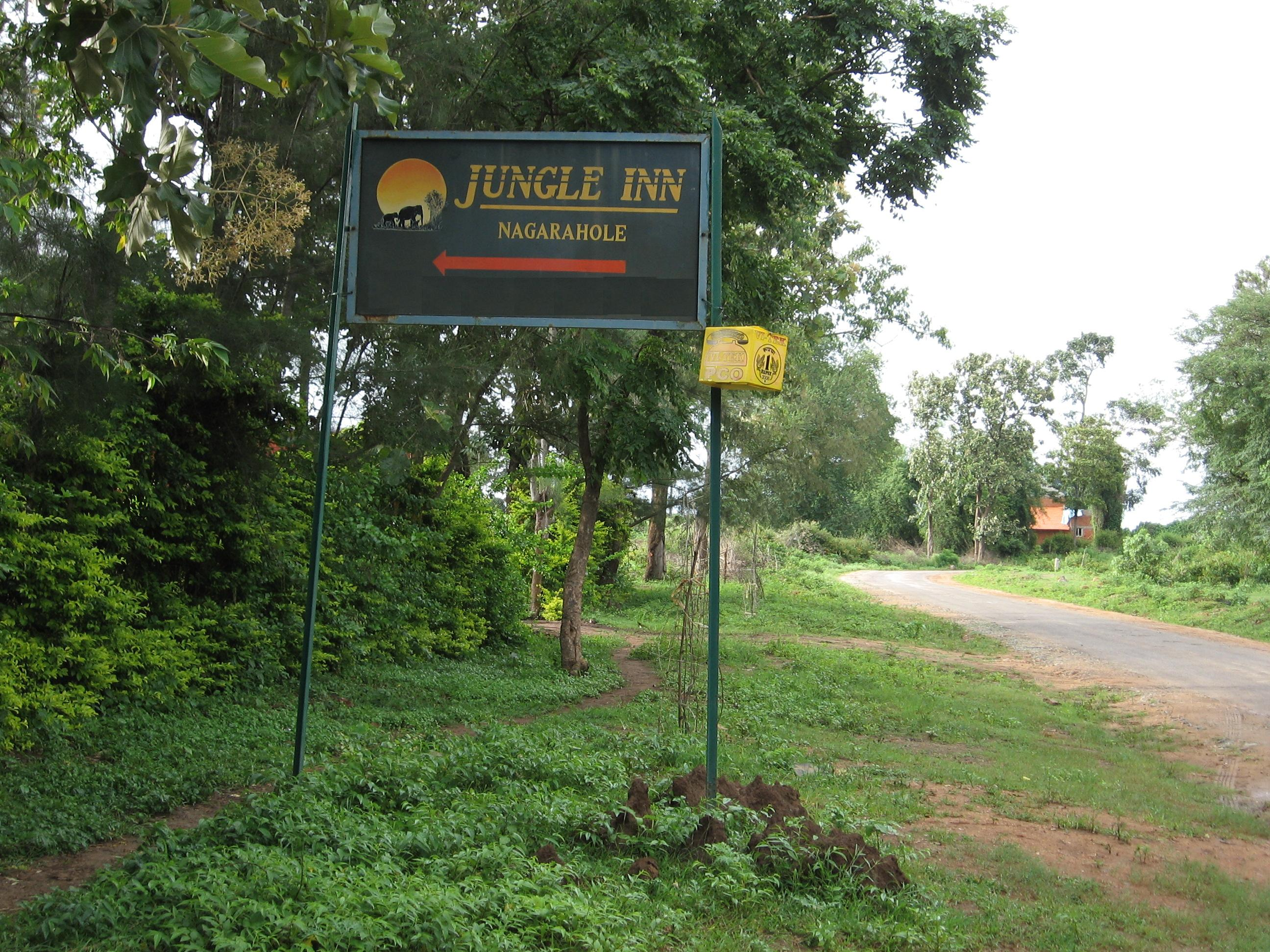 Jungle inn