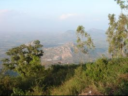 Horsely Hills, Madanapalle